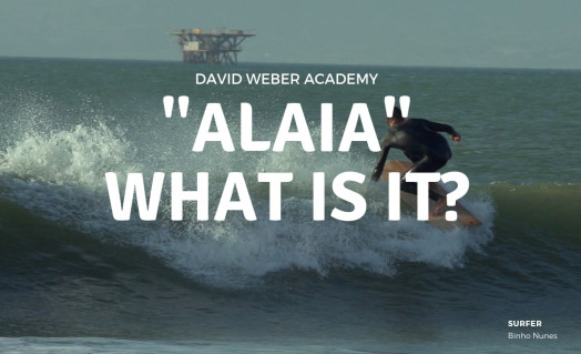 Alaia: What is it?
